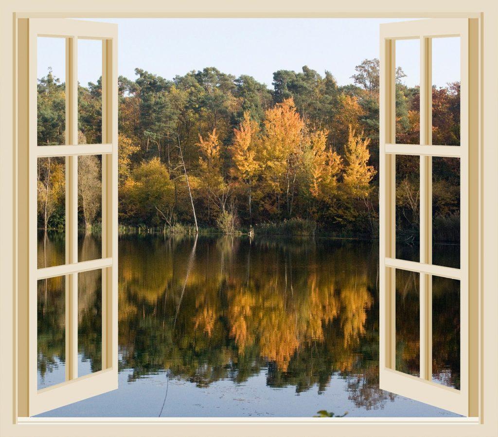 autumn, lake, pond